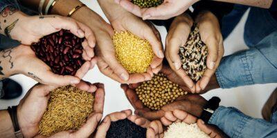 El Estado Peruano y el Derecho Humano a la Alimentación